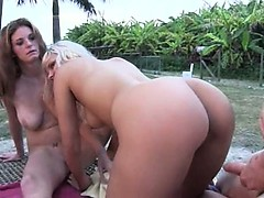 Horny babes suck dick in car