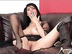 Sheer black lingerie on pornstar Tera Patrick