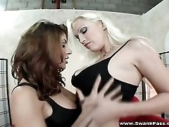 Sativa Rose and Nicki Hunter lesbian sex scene