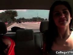 Cute college girl sucking dick in a car